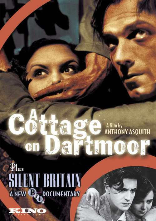 A Cottage on Dartmoor Poster