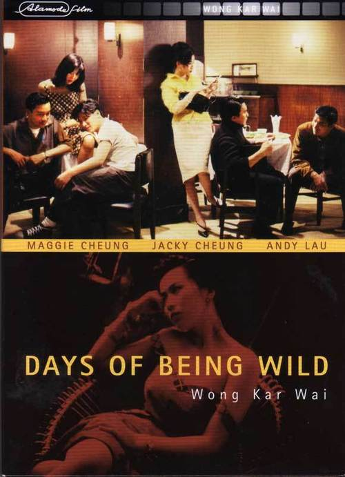 1991 Days of Being Wild movie poster