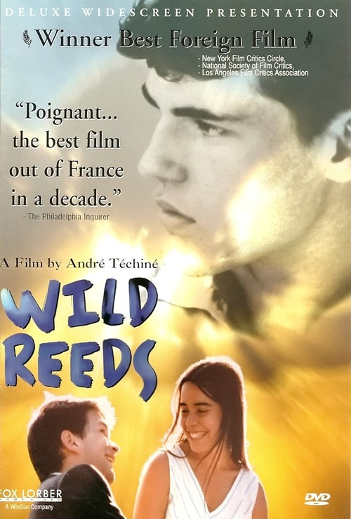 1994 Wild Reeds movie poster
