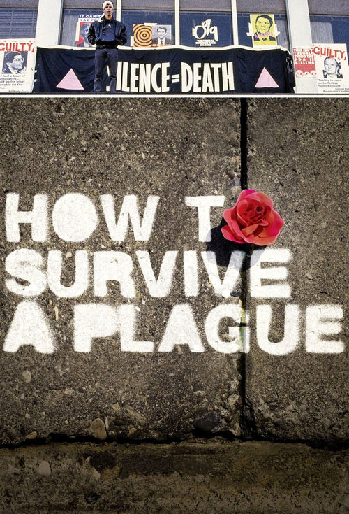 2012 How to Survive a Plague movie poster